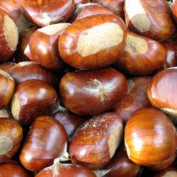 Castañas, fruto seco reconstituyente