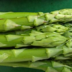 El espárrago verde, una hortaliza exquisita