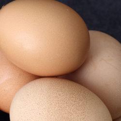 Mitos sobre el huevo (II)