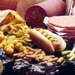 Las grasas, la reserva energética