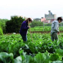Luis Serra: Hay que educar en alimentación sostenible, igual que en reciclar