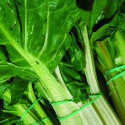 Las acelgas, ricas en vitamina A