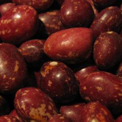 Feria de la alubia pinta alavesa y legumbres de Álava