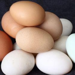 ¿Huevos blancos o morenos?