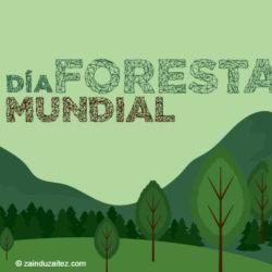 """Día Forestal Mundial: """"Los bosques y la energía"""""""