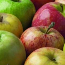 ¿Por qué las manzanas son muy buenas para la salud?