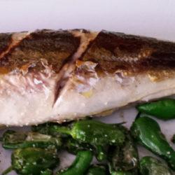 El chicharro, pescado humilde y sabroso