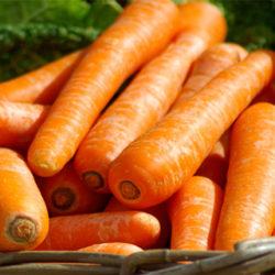 La zanahoria, importante en nuestra dieta