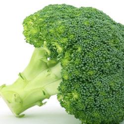 Brokolia