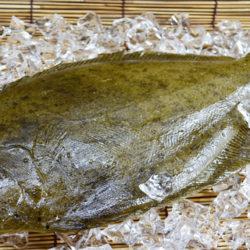 El lenguado, un pescado blanco muy digestivo