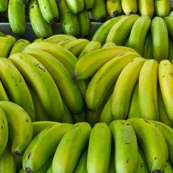¿Cuáles son las diferencias entre el plátano y la banana?