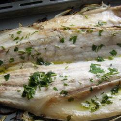La lubina, un pescado blanco con gran sabor