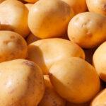 patatas nuevas