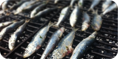 sardinas nutritivas
